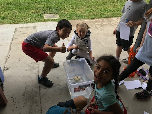 Three students waiting to see if a pumpkin floats in a bucket of water.