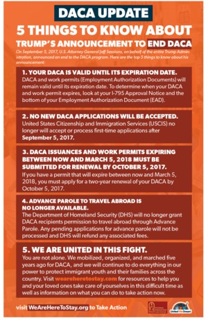 DACA update 5 things to know flyer