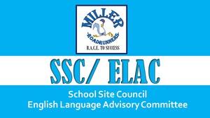 SSC ELAC