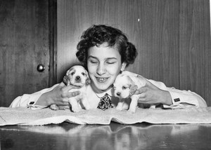 Young girl with 2 puppies. very cute