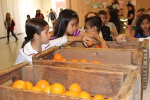 Eastwood Organic Student Farmers
